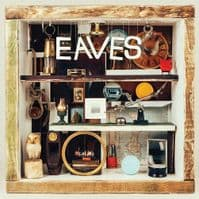 EAVES What Green Feels Like Vinyl Record LP Heavenly 2015